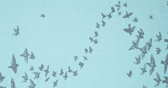 starling-murmuration-600x300